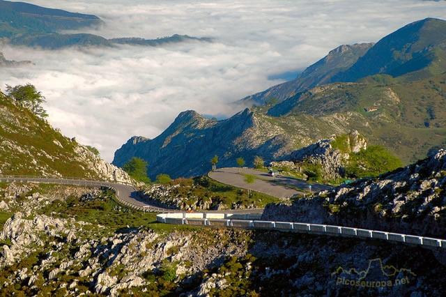 thumbnail_lagos-covadonga-DSC_0081-d30